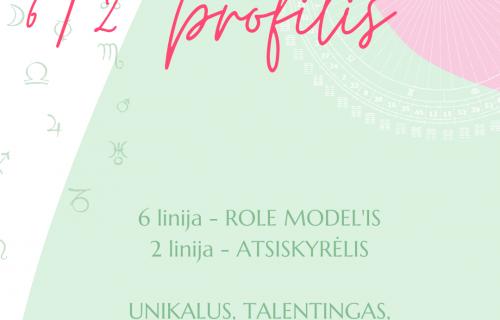 Human Design LT profilis 6/3
